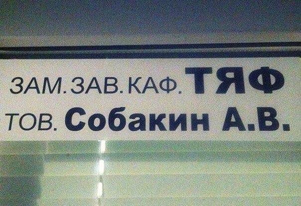 ТЯФ - Собакин АВ
