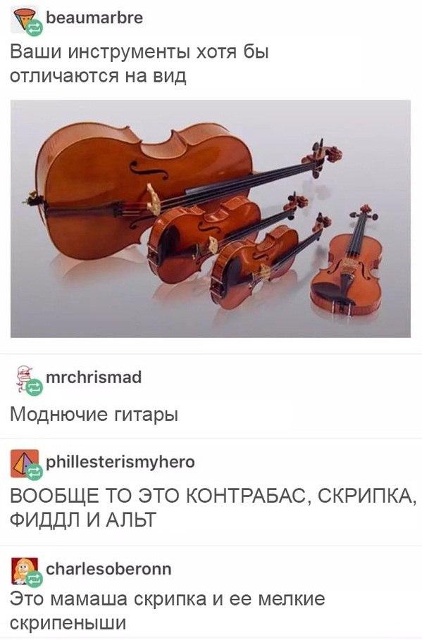 Контрабас, скрипка, фиддл, альт